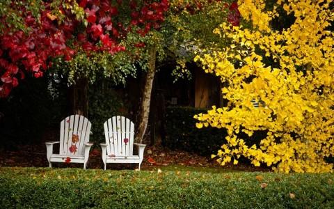 jardin-otono
