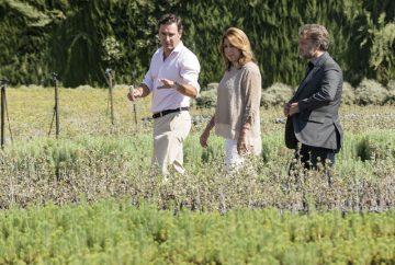 Susana d az ha visitado el vivero de san jer nimo en for Viveros en asturias