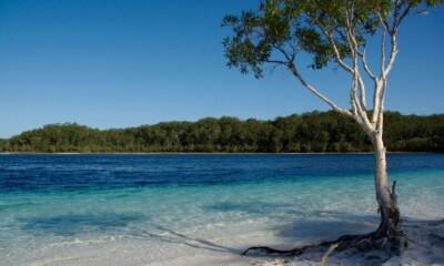 El lago McKenzie