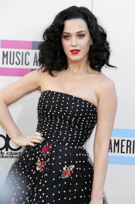 41st American Music Awards, Los Angeles