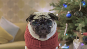 1480498864_Gizmo_salva_la_Navidad_1