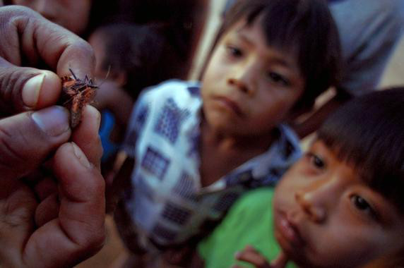 Chagas Plagues Poor South America