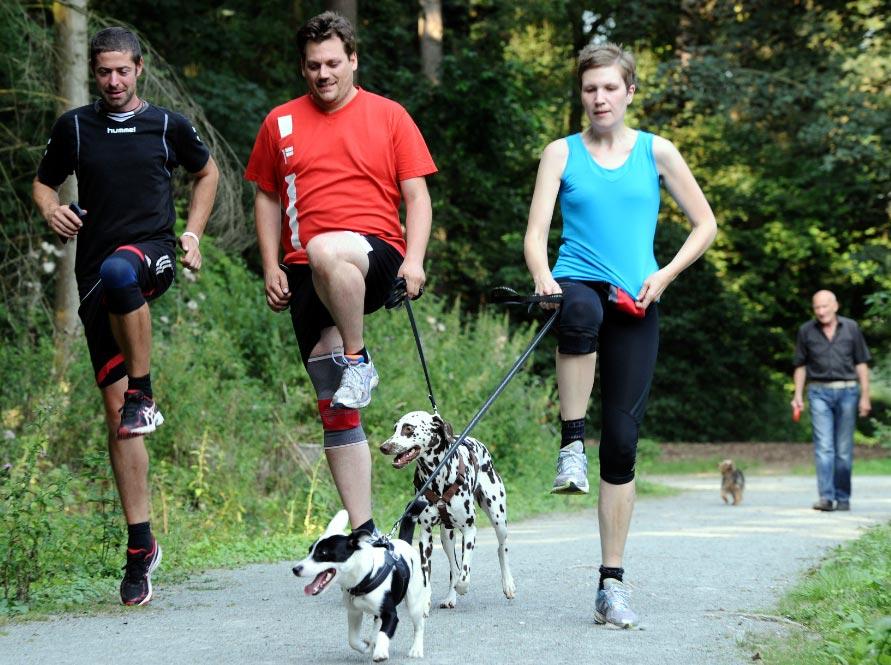 ventajas-de-vivir-con-un-perro