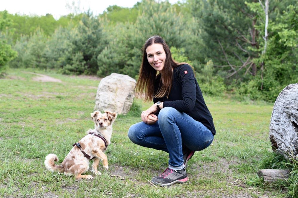 mascotas-collar-perro