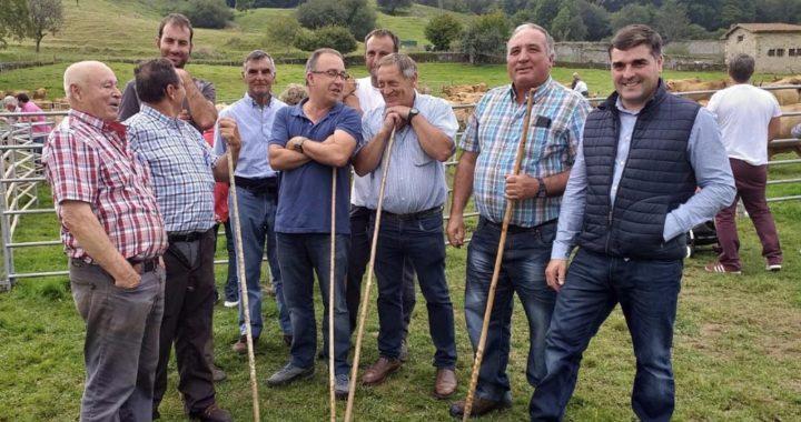 Ferias-en-Asturias-150920191
