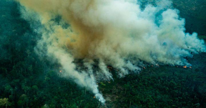 Columnas de humo en el área protegida de Cachoeira Seca, en Brasil. Foto: Fabio Nascimento/Greenpeace/dpa