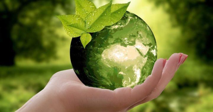 productos-eco