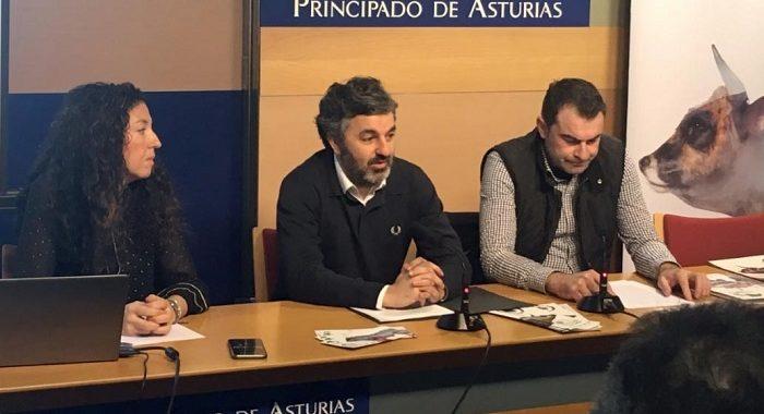 Ternera-asturiana (2)
