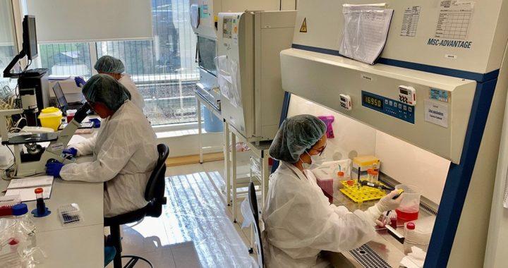 1582620345_Histocell_laboratorio_Baja