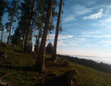 El digital de Asturias - Candás