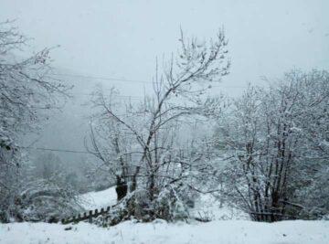 Nieve Asturias