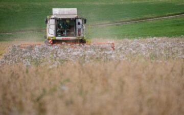 cosecha avena en Alemania