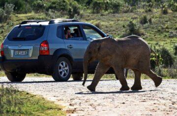 Sudáfrica Turismo